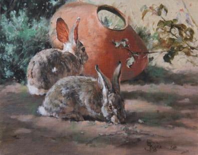 bunny rabbits linda budge