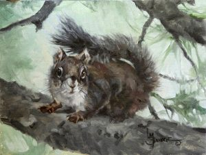 Mt Graham red squirrel