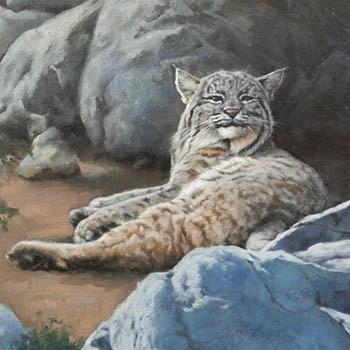 bobcat oil painting