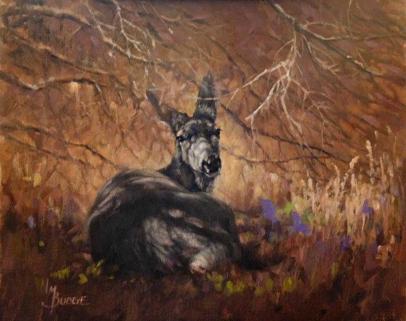original oil painting by Linda Budge - At peace