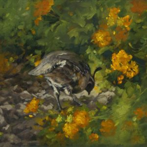 original oil painting by Linda Budge - BOTTOMS UP