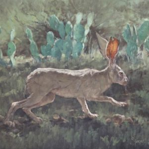 original oil painting by Linda Budge - JACK RABBIT