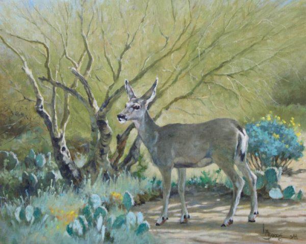 original oil painting by Linda Budge - The Sonoran Princess