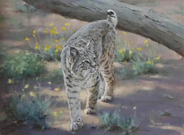 original oil painting by Linda Budge - bobcat walk softly
