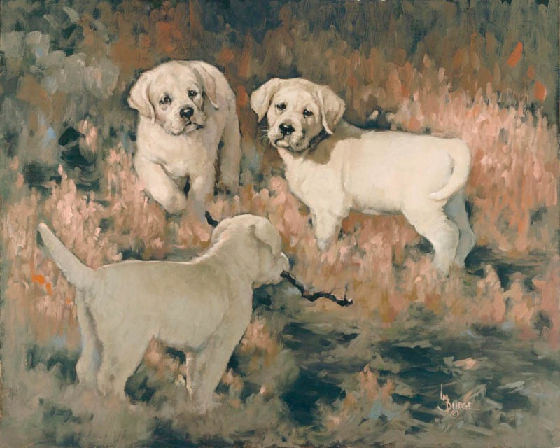 original oil painting by Linda Budge - lab puppies
