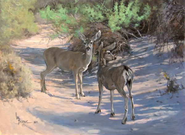 original oil painting by Linda Budge - deer in a desert wash