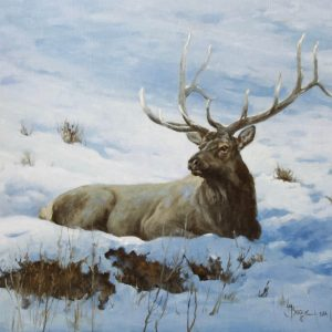 original oil painting by Linda Budge - elk