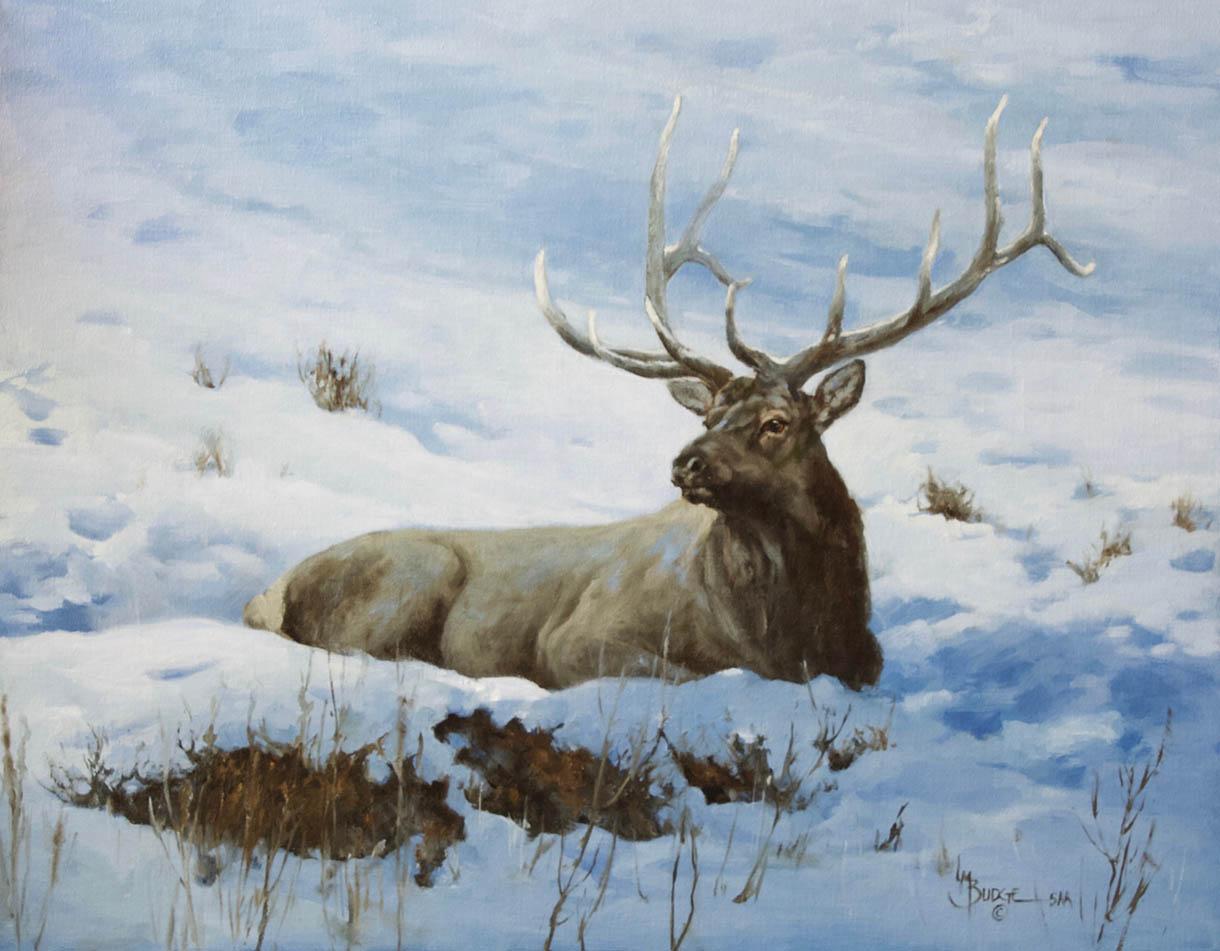 original oil painting by Linda Budge - elk