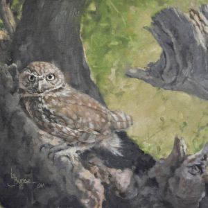 original oil painting by Linda Budge - OWL