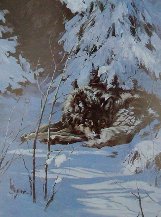 original oil painting by Linda Budge - wolf